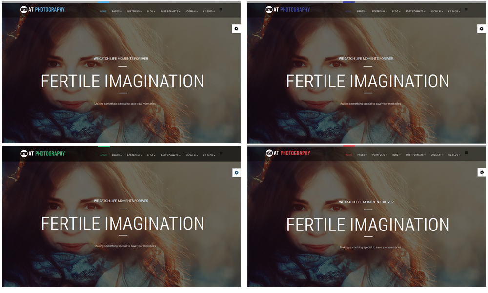 Photography Joomla template Styles