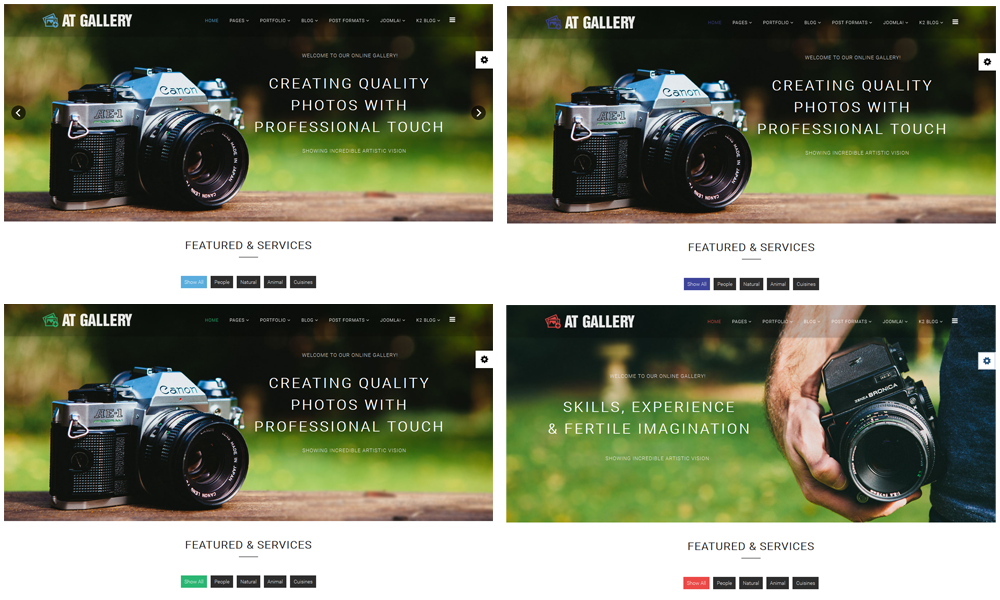 AT Gallery Joomla template Color styles