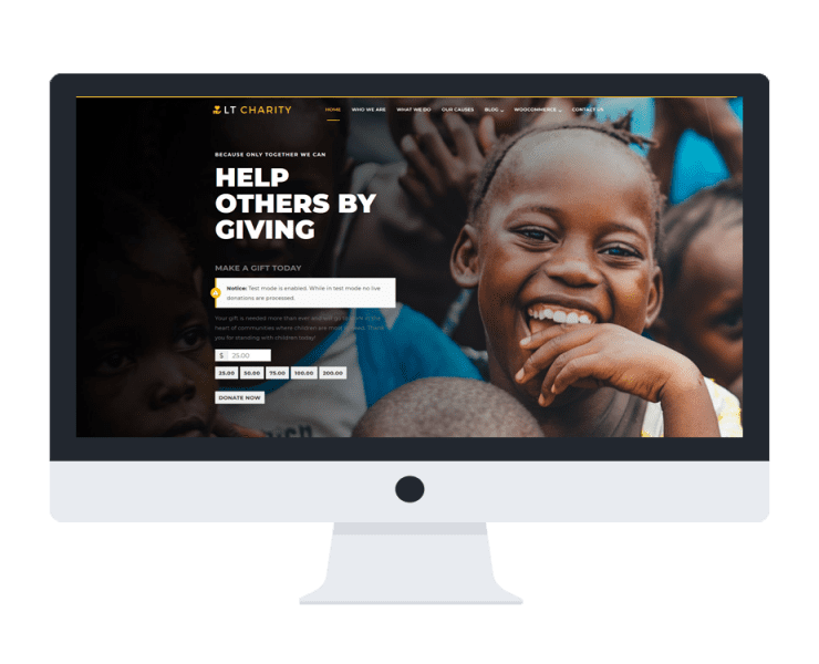 lt-charity-free-wordpress-theme