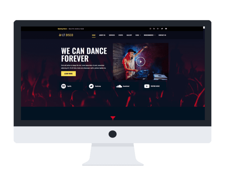 lt-disco-free-wordpress-theme