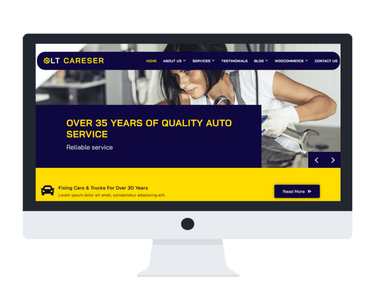 lt-careser-free-wordpress-theme-full